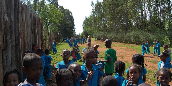 adozione di un bambino dell'asilo (1)