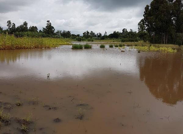 alluvione Et (11)