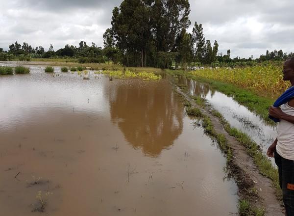 alluvione Et (12)